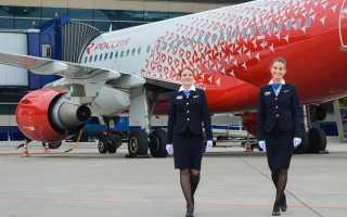 Чартерные рейсы авиакомпании «России»: особенности регистрации и нормы провоза багажа
