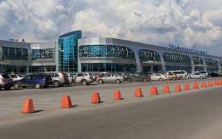 Как добраться от аэропорта Толмачево до Новосибирска
